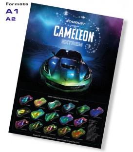 Extreme Kameleon poster
