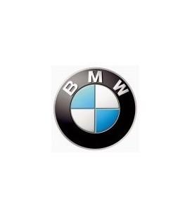 PAINT BMW MOTORRAD