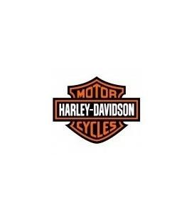 PAINT HARLEY-DAVIDSON