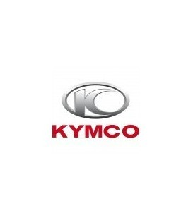 PAINT KYMCO