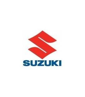 PAINT SUZUKI