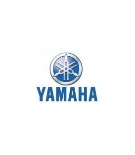 PAINT YAMAHA
